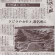朝日新聞(2005.11.29 掲載)