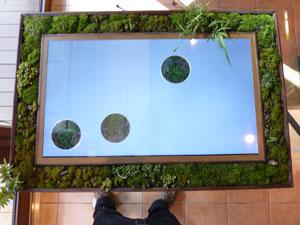 『うちの庭』二つ目の作品