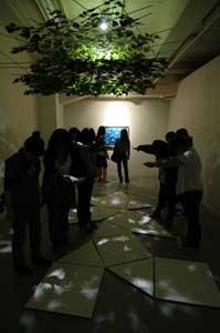 木もれ陽プロジェクト5